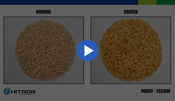 Seed Coating - Paddy